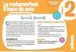 Il-baco-da-seta_obiettivi