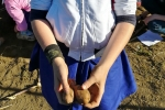4_patate-in-mano_ok